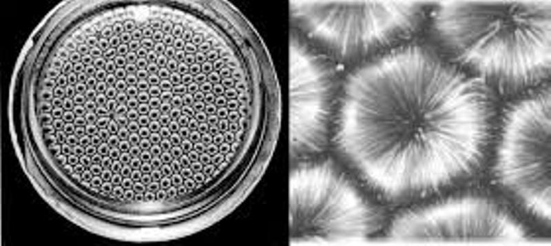 9. Эфирный вихрь - вихревой сегмент структуры материи. 8d9ab1